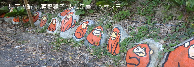 「我是泰山森林之王」野猴子讓你在樹林間盪來盪去!
